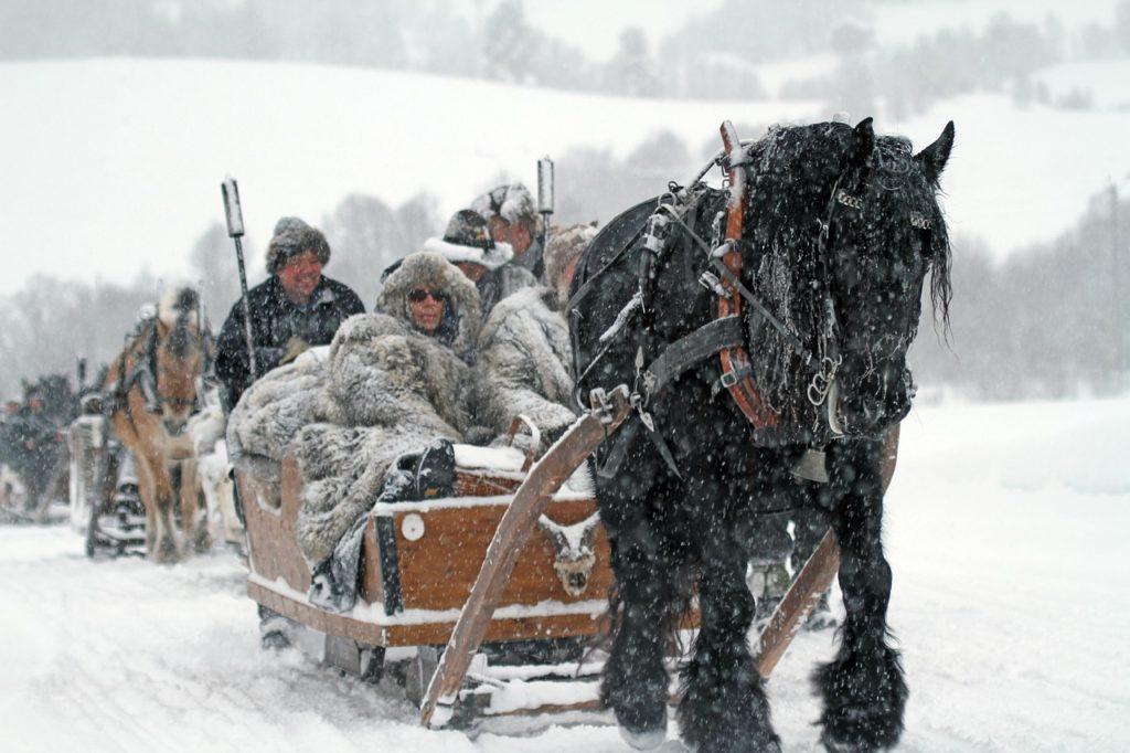 dalsbygda, norway, winter